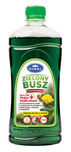 Zielony Busz